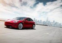 В электрокаре Tesla появится «режим собаки»