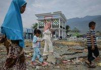 Власти Индонезии назвали сумму ущерба от землетрясения и цунами