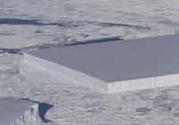 НАСА обнаружило «идеальный» айсберг