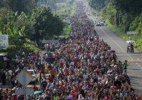Трамп: среди направляющихся к США мигрантов могут быть боевики ИГИЛ