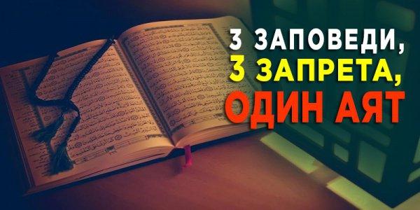 6 принципов идеального мусульманского общества