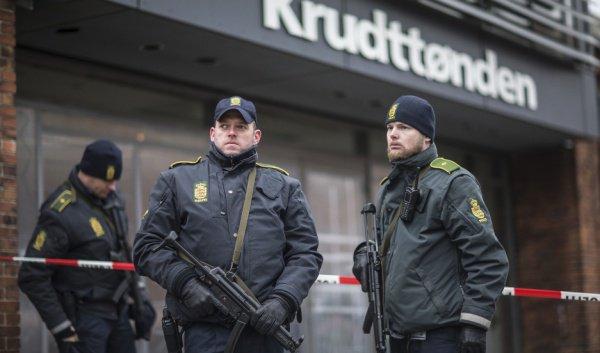 Полиция Дании.