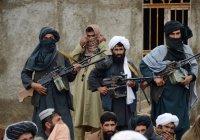«Талибан» контролирует наибольшую с 2001 года территорию Афганистана