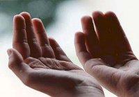 Дуа на каждый день, которую советовал читать Пророк Мухаммад (мир ему)