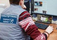 Кибердружины могут появиться в России