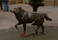 Памятник местному Хатико открыли в Челябинске