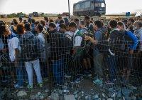 20 тысяч вооруженных нелегалов готовят прорыв на территорию Европы