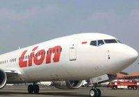 Власти Индонезии назвали причину крушения самолета