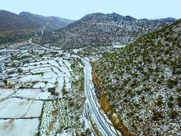 Снег превратил провинцию Саудовской Аравии в «невесту в белом платье» (ФОТО)