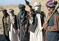 Талибы приедут в Москву