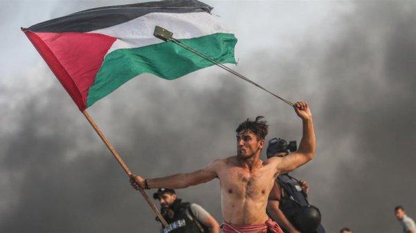 Фото А'эда Абу Амро, получившее известность в Европе.