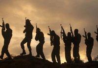 Более 20 тысяч террористов пытаются бежать из Сирии и Ирака