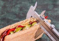 Стало известно, когда организм сжигает больше всего калорий