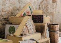 Самый лучший в мире сыр выбран в Норвегии