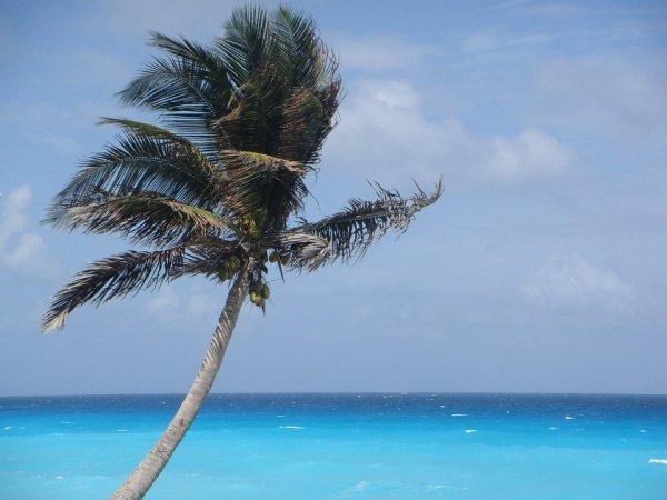 Первоначально Канкун являлся обыкновенной рыбацкой деревней