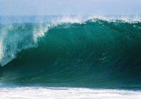 20-метровая волна накрыла серфера в Португалии (ВИДЕО)
