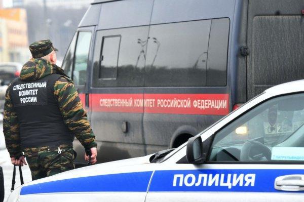 Сибирячка отправила в ИГИЛ более миллиона рублей.