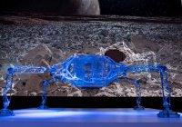 Паукообразный планетоход создали в НАСА