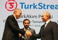 Эксперт рассказал о «символическом значении» встречи Путина и Эрдогана