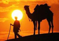 За что ангелы просили прощения у Пророка Мухаммада (мир ему)?