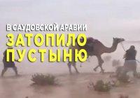 Исполнение пророчества Пророка (мир ему) - в Саудовской Аравии снег и наводнение