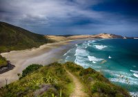 Ученые из Новой Зеландии заметили сдвиг суши