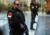 Власти Египта будут защищаться от правозащитников