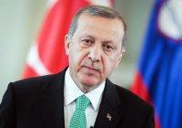 Эрдоган назвал цель создания ИГИЛ