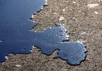 Морские микробы начали «пожирать» нефть