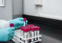 В Британии искусственная плацента прошла тест на беременность