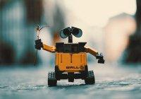 В Японии роботы научились работать с людьми