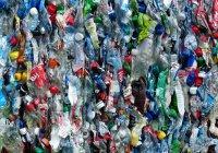 Переработанные пластиковые бутылки являются рассадником бактерий