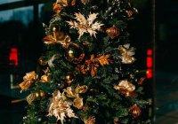 Установлена самая дорогая в Европе новогодняя елка (ФОТО)