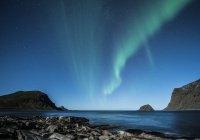В Норвегии случайно запечатлели редчайшего олененка (ФОТО)