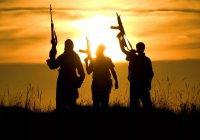 Военачальник из Бельгии назвал Россию большей опасностью, чем терроризм