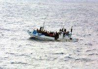 В Германии рассказали, как решить проблему нелегальной миграции