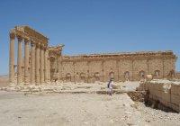 Первая группа туристов посетила Пальмиру после освобождения от ИГИЛ