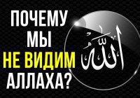 Почему мы не видим Аллаха?
