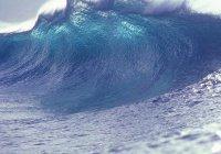 Систему оценки опасности цунами создали в МГУ