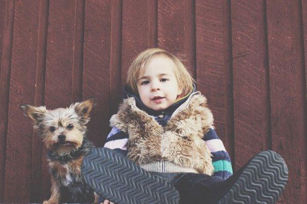 Практически у половины детей, в чьем доме не было животных, была аллергия на шерсть