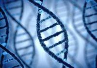 Биохакер шокировал ученых, вколов себе ДНК Корана и Библии