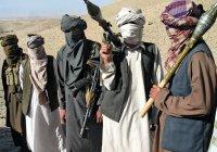Власти Афганистана будут интегрировать талибов в общество