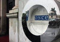 В Кремле прокомментировали доклад ОБСЕ о нарушении прав человека в Чечне