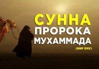 12 простых, но очень важных сунн Пророка Мухаммада (мир ему)