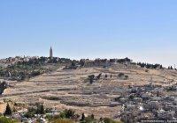 Россияне стали главными туристами в Палестине