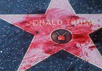 Звезду Трампа на Аллее славы Голливуда изрисовали свастикой