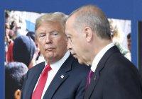 Трамп может посетить Турцию в 2019 году