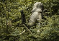 В России впервые провели «перепись» белков и жиров мамонта