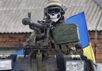 The Times: на стороне Киева в Донбассе воюют боевики ИГИЛ