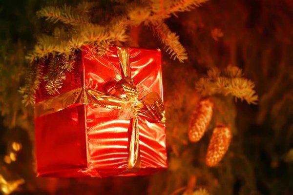 Полицейские пояснили, что в силу своего возраста Санта-Клаус мог просто перепутать подарки